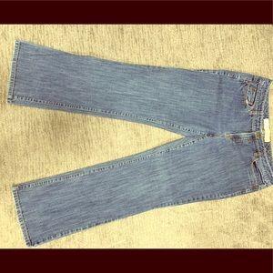 Ann Taylor Loft Original Boot Cut Jeans (12)